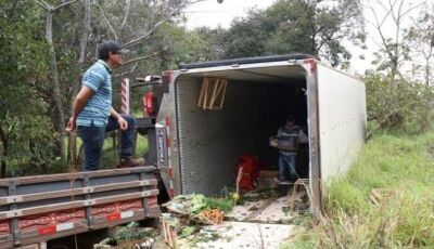 Motorista desvia de capivara e tomba caminhão carregado de frutas e verduras