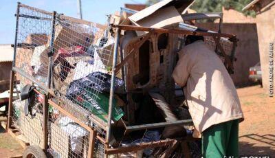 Profissão passada de pai pra filho, catadores de reciclagem transformam lixo em renda na Capital