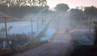 Fronteira com o Paraguai registra geada na área rural de Ponta Porã