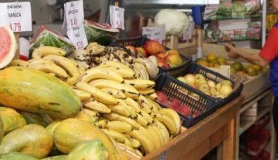 Prefeitura pode distribuir sobras de mercados para instituições sociais