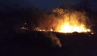 Moradores e equipes de resgate controlam chamas em direção à área urbana de Bonito (MS)