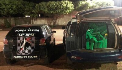 Força Tática apreende mais de 300 kg de maconha em Deodápolis
