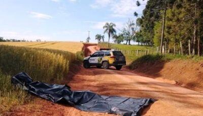 Polícia procura cabeça humana para identificar vítima de homicídio no Paraná
