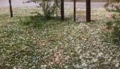 Vídeo: Chuva de granizo é registrada em Maracaju, ASSISTA