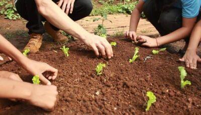 Reinaldo Azambuja e Marquinhos Trad lançam Agricultura Urbana