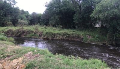 Mulher é morta e jogada no rio; filho de quatro anos da vítima estava em carro abandonado