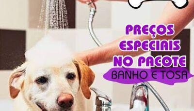 Pacote mensal de Banho e Tosa para o seu pet é na Cia do Bicho em Fátima do Sul