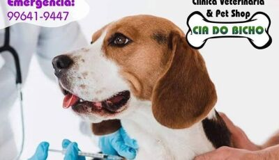 Fátima do Sul: Cia do Bicho destaca a importância da vacina em dia no seu Pet, Confira as dicas