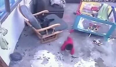 Gato herói salva bebê prestes a cair de escadaria. Vídeo: