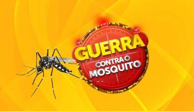 MS lança nesta segunda-feira campanha de enfrentamento de doenças transmitidas pelo Aedes aegypti