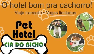Vai viajar e não sabe onde deixar seu filho de patas? agora tem Pet Hotel Cia do Bicho em Fátima do