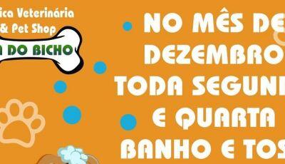 No mês de dezembro, toda segunda e quarta tem banho e tosa com 20% na Cia do Bicho em Fátima do Sul