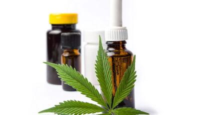 Anvisa aprova registro e produção de remédios à base de cannabis