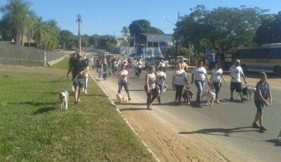Bonito (MS) tem manifestação contra grupo criminoso que organizava rinha de pitbull em São Paulo