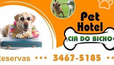 'Hotel bom pra cachorro' é no Pet Hotel Cia do Bicho em Fátima do Sul