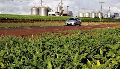 Governo revitaliza estrada rural que recebe até 100 caminhões dia na época da colheita em Maracaju