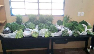 No presídio de Ivinhema, horta cultivada por internos garante doação de verduras a seus familiares