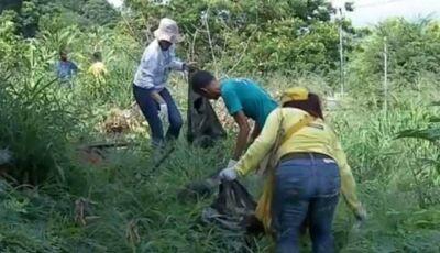 Notificações de dengue crescem 342% em uma semana e cidade do Pantanal de MS assume epidemia