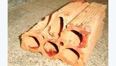 Menina mata homem a tijoladas, após tentativa de estupro