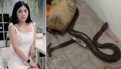 Mulher é picada por cobra ao se sentar em vaso sanitário e acaba salva a marteladas