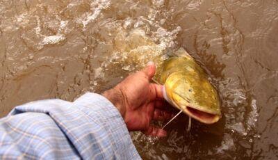 Governo flexibiliza Cota Zero e novas regras para a pesca passam a vigorar em rios de MS