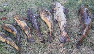 Jogou nas redes sociais, 3 pescadores são autuados pela PMA praticando pesca predatória