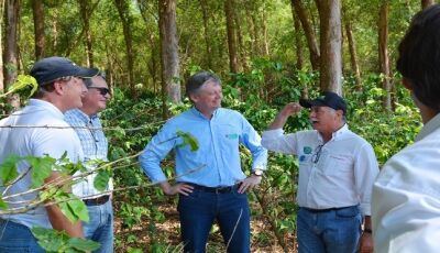 Projeto inovador de fazenda em Itaquiraí é modelo para o Estado Carbono Neutro em MS