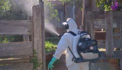 ALERTA: Com quase 400 casos notificados de Dengue, sinal 'vermelho' é aceso em Fátima do Sul