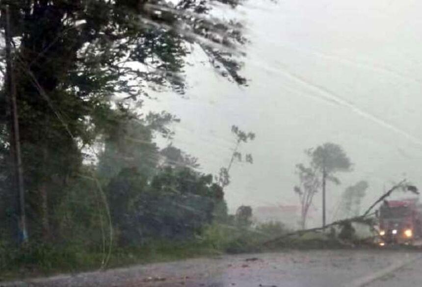 Diario da Jaragua Vento e chuva forte causaram estragos em Jaraguá do Sul e região