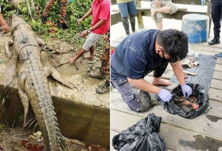 O réptil mordeu um dos pés do jovem e o arrastou para o rio.