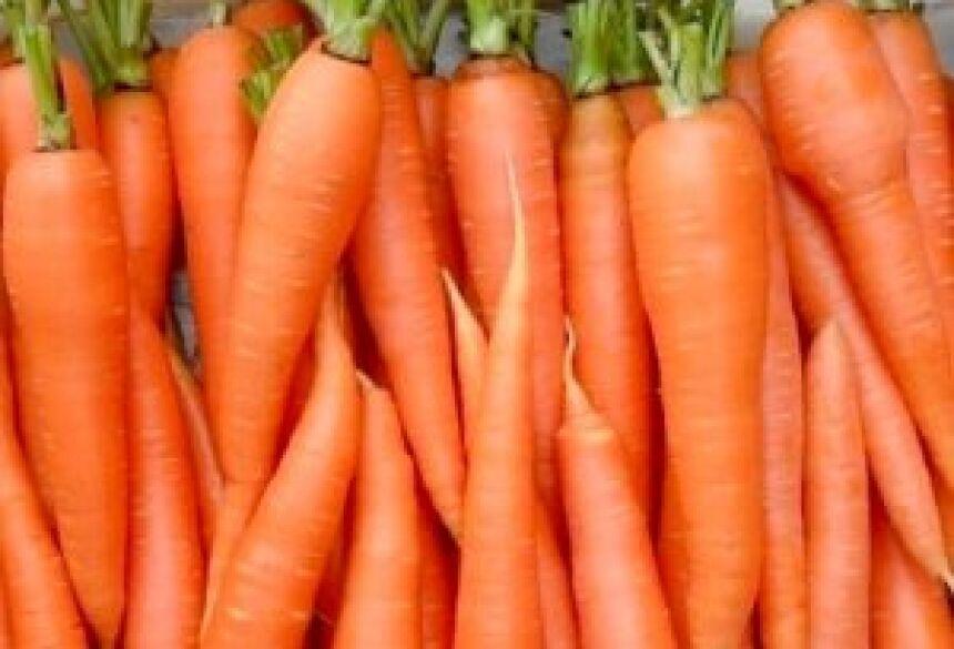 Caixa com cenouras de boa qualidade