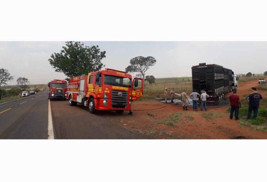 Uma carreta carregada com boi pegou fogo