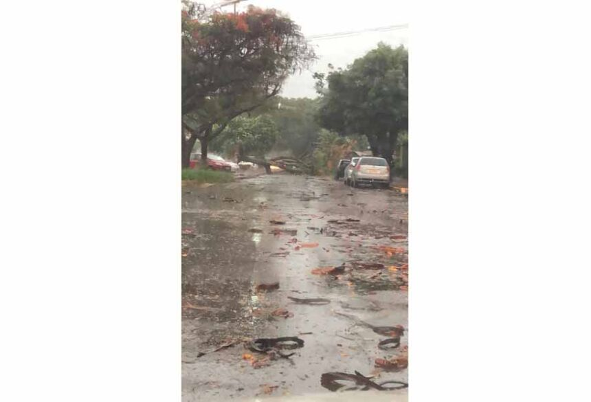 Chuva deixou muita sujeira nas ruas de Dourados nesta manhã