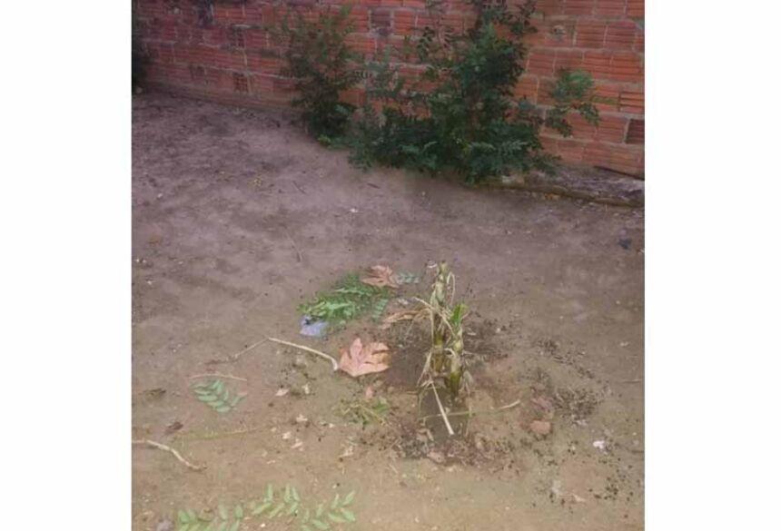 Polícia Militar fez buscas no local, cavando o buraco de aproximadamente 3 metros de profundidade, onde foi encontrado o corpo da vítima.
