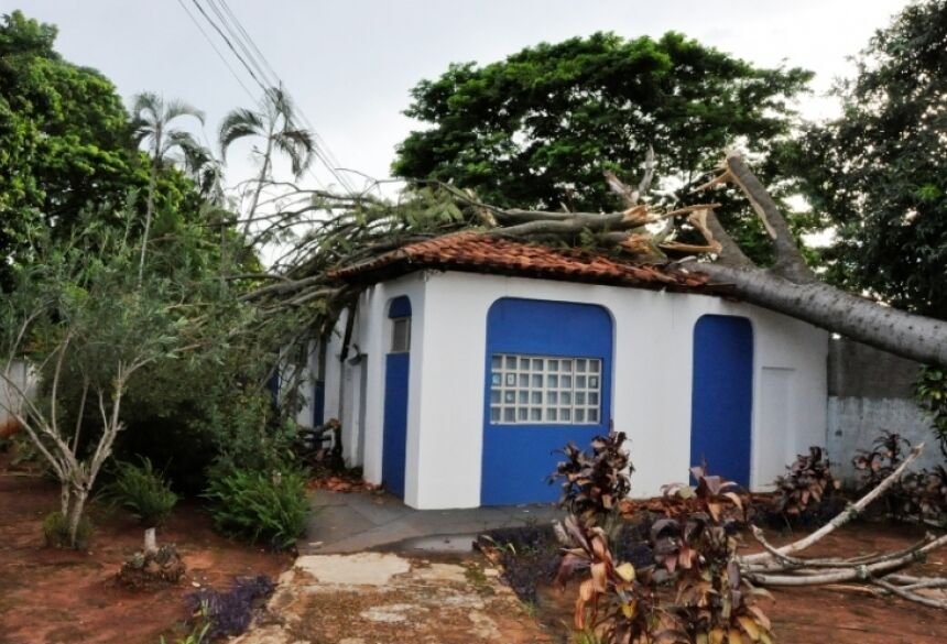 Foto: Marcio Rogério/Nova News