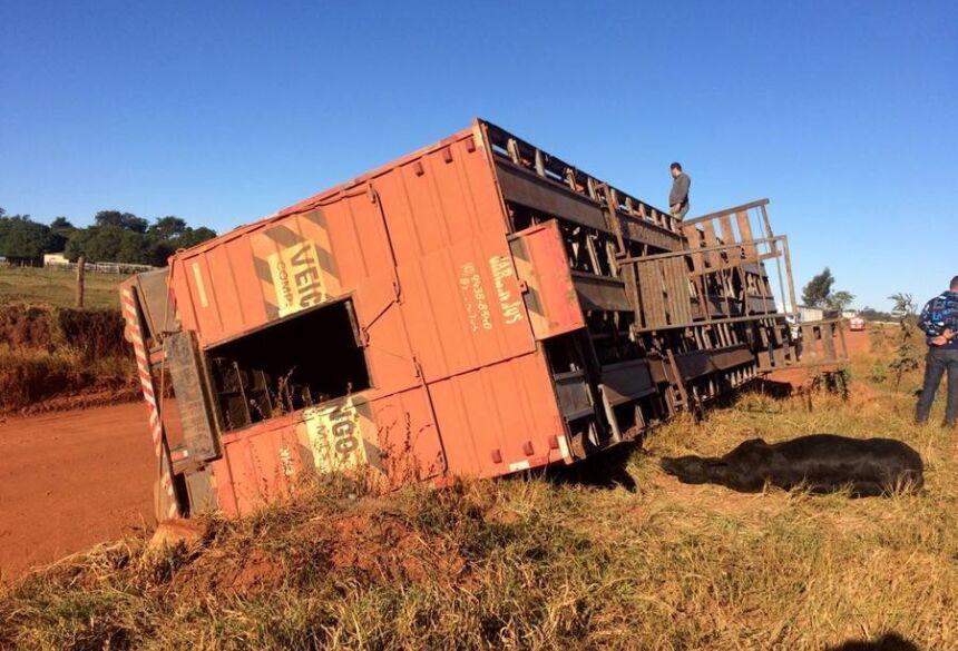 Motorista estava em uma subida quando o gado pendeu para o lado e o caminhão veio a tombar em seguida - Foto: Márcio Rogério/Nova News