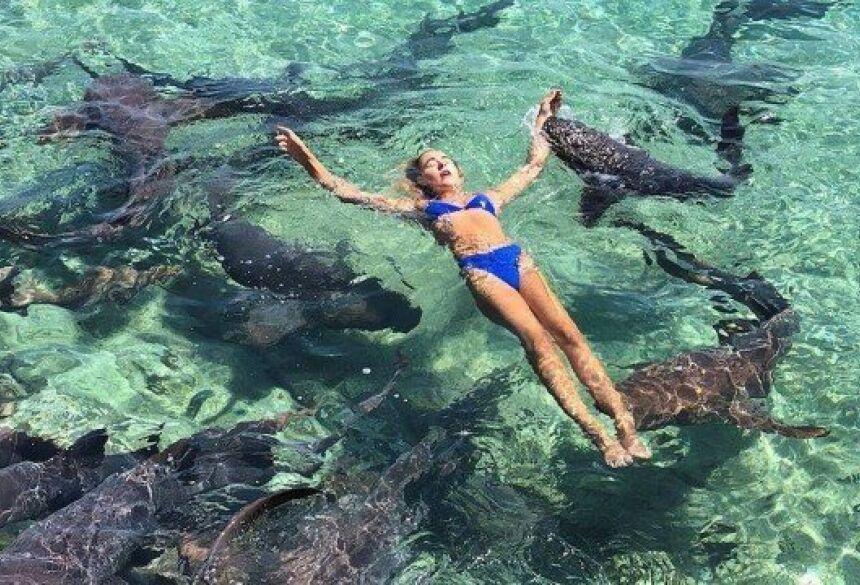 Modelo é mordida por tubarão enquanto posava para foto Foto: Reprodução