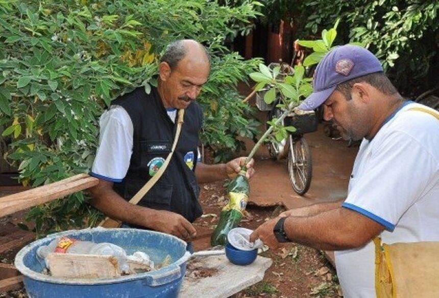 Combate à dengue leva agentes à vistoria domiciliar em todo país foto - divulgação