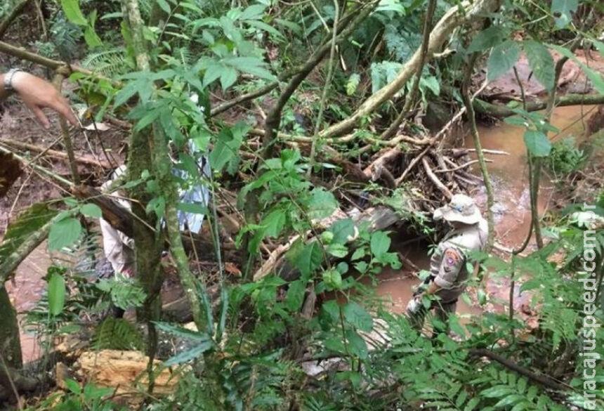 Cadáver estava preso entre os arbustos levados pela correnteza do rio. / Foto: Porã News