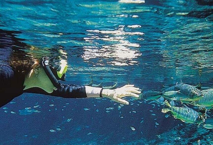 Conheça o principal passeio de flutuação de Bonito (MS)!