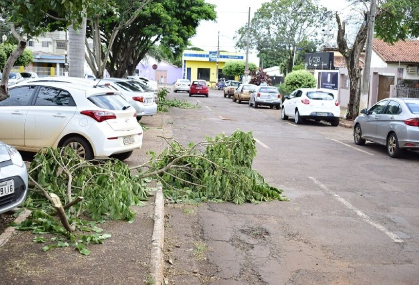 Imam multa Energisa em R$ 17 mil por poda excessiva ou drástica de árvores em Dourados