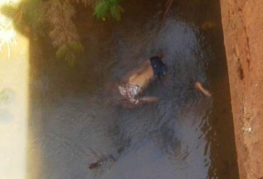 Corpo do jovem encontrado morto em córrego no Vale da Esperança. Fotos: Divulgação