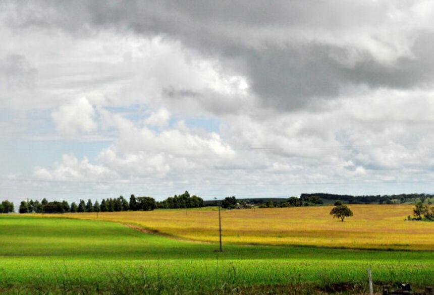 A agricultura tem crescido em Mato Grosso do Sul sem abertura de novas áreas.