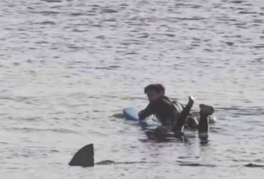 Surfista 'congela' ao perceber a companhia de um grande tubarão branco nos EUA Foto: Reprodução/5ABC