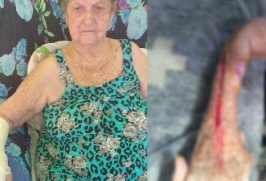 A aposentada Alda Waltz Lisboa, de 93 anos Foto: Arquivo pessoal