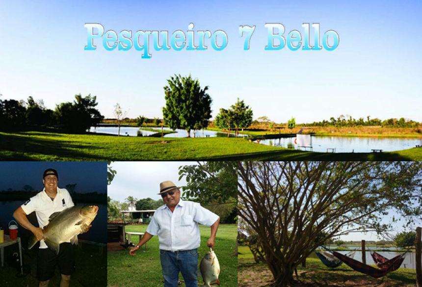 Com pratos típicos do peixe, Pesqueiro 7 Bello serve delicioso almoço neste domingo em VICENTINA