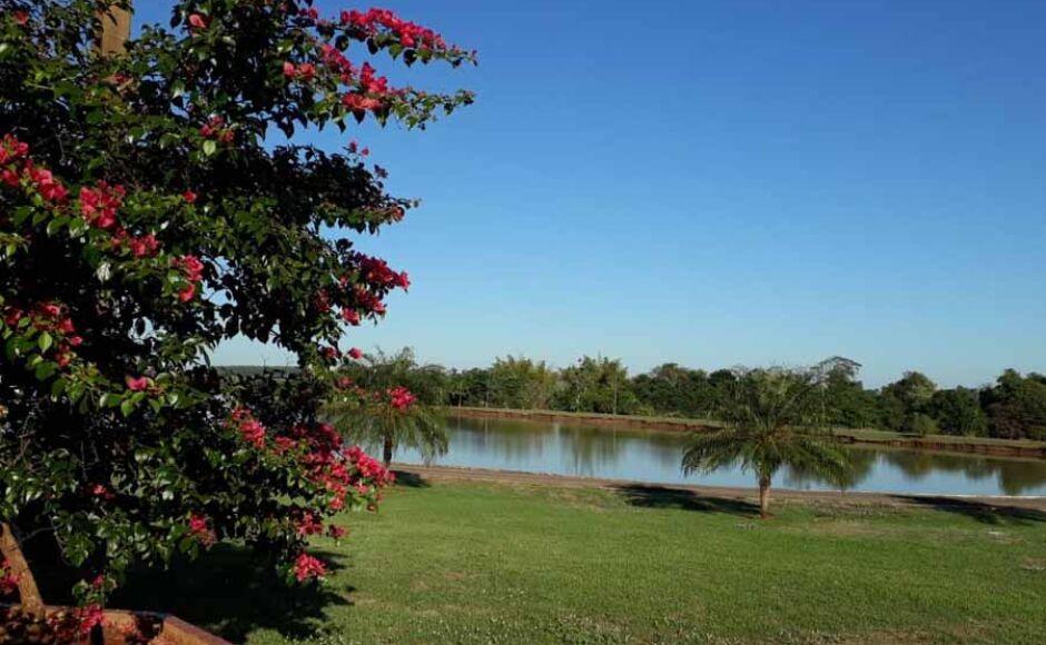 Última semana de outono será de tempo firme e frio rigoroso em Fátima do Sul