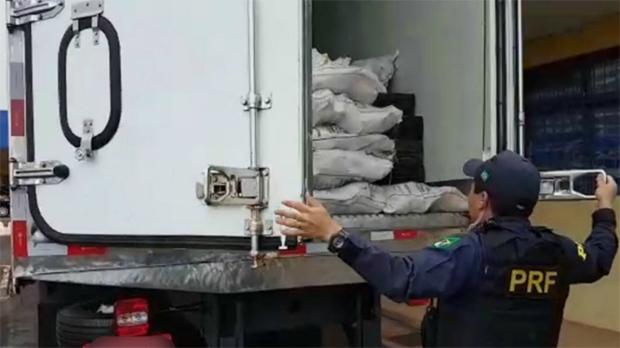 Condutor abandona caminhão com 10 toneladas de maconha na BR-163