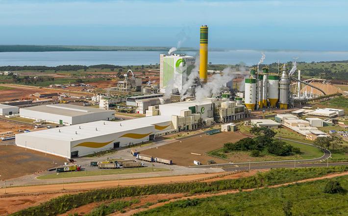 Eldorado Brasil tem sede em Três Lagoas - Divulgação