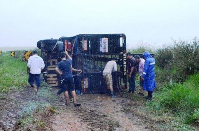 Pessoas ajudaram a resgatar os animais de dentro do caminhão. (Foto: Ivinotícias)